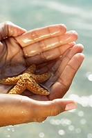 South American woman holding starfish