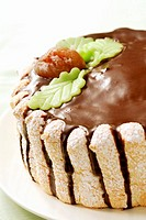 Chestnut cake with chocolate icing