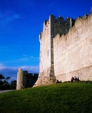 Ross castle, Killarney, Co Kerry,