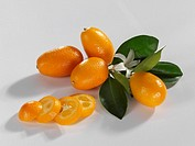 Kumquats with flower and leaves