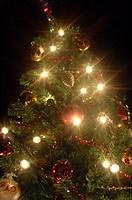 albero di natale, ardesio, provincia di bergamo, lombardia, italia