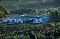 The J C  Le Roux Wine Estate, Stellenbosch, S  Africa