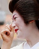A geisha in Pontocho, a traditional Japanese night-time entertainment area. Kyoto. Japan