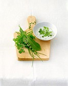Frankfurt green sauce with herbs on wooden board