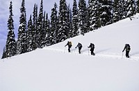 Four people climbing slope in snow, rear view
