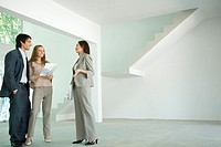 Female real estate agent showing house to young couple