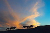 A glorious sunset over the desert in Ejina, Inner Mongolia
