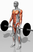 Barbell deadlift Part 1 of 2 (thumbnail)