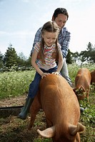 Father helping daughter 5_6 to ride pig in sty