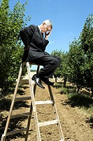 Man sitting on ladder holding his head in orchard