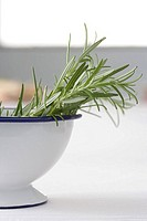 Rosemary in a bowl