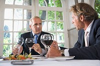 Two businessmen having lunch