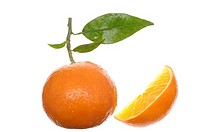 Oranges, fruits and piece