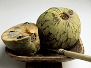 Cherimoya Annona cherimola