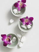 Flowers decorated in tiny bowls, accompanied by pebbles