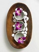 Wooden bowl decorated with pebbles and flowers in porcellain bowls