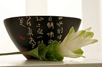 Bowl with Asian character pattern