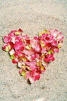 Heart made of blossoms (thumbnail)