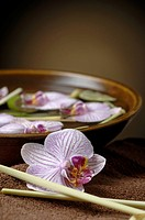 Bowl with orchid blossoms and limes