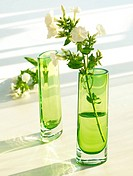 Green glass vases with Phlox