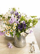 Bouquet of sweet pea, camomile, aconitum and phlox