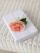 White wrapped gift with a blossom