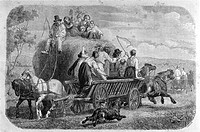 Bringing in the hay in 1850's (From 'Le Tour du Monde', 1860's). Denmark