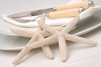Place setting with starfishes