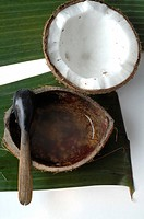 Coconut and coconut oil (thumbnail)
