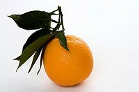 Orange with stem and leaves