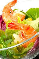 Shrimps and salad
