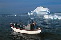 Canada - Newfoundland - Saint John's Bay - Boat