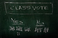 Class Voting Results on a Blackboard