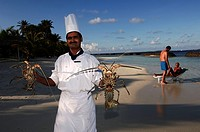 Maldives, cook showing lobster
