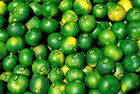 Israel, Tel Aviv, green lemons for sale