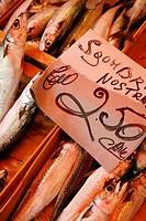 Sardines, Ballaro Market, Palermo, sicily.