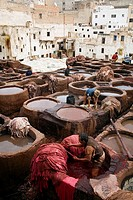 The tanneries souk at the Medina (old town). Fes el Bali, Fes. Morocco