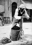 vecchi mestieri, venditore di ricci a palermo, 1920_1930