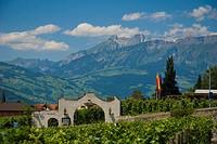 Restaurant, Torkel, Vaduz, Liechtenstein