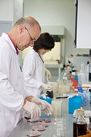 Microbiology laboratory. Microbiological tests of food. AZTI-Tecnalia. Technological Centre specialised in Marine and Food Research. Sukarrieta, Bizka...