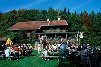 People, in, beer, garden, Schatzberg, alp, near, Diessen, Bavaria, Germany