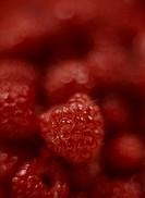 Rubus idaeus, Raspberry