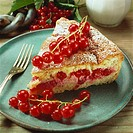 A piece of redcurrant cake