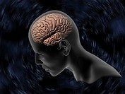 Thinking  Computer artwork of someone thinking, with the left hemisphere of the brain visible  The folds on its surface are known as sulci and they al...