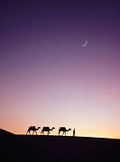 Travel, China, Gansu, Dunhuang, Desert landscape,