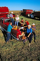 An extended farm family takes a break and has a tailgate lunch during the Autumn corn harvest / Illinois, USA MR
