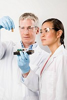 Multi-ethnic scientists examining vial of liquid