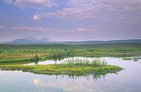 Lake along Dempster Highway,Ogilvie Mountains, Yukon Territory, Canada