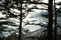 Green point Beach from campground, Pacific Rim National Park, Vancouver Island, British Columbia, Canada