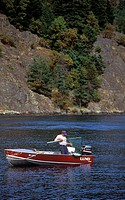 salmon fishing, angler lands salmon, Vancouver Island, British Columbia, Canada